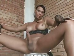 Ebony shemale plays with her big dong